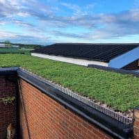 green roof modular tray installations