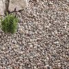 caledonian pebble border for green roofs