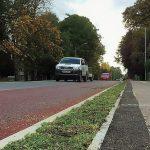 Sedum mat for cambridge cycle route
