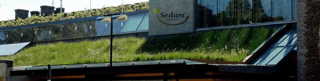 Sedum Living Green Roofs