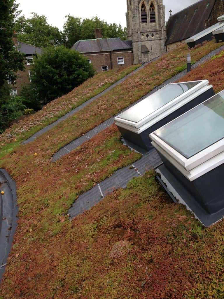 Green Roof Benefits