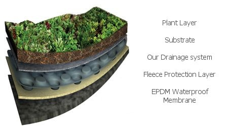 components of a green roof