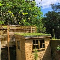 shed green roof kit