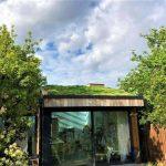 Sedum Supply Green roof maintenance service