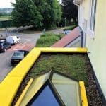 Aberystwyth Sedum Installation