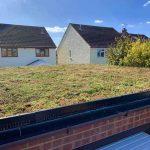 cambridge sedum green roof